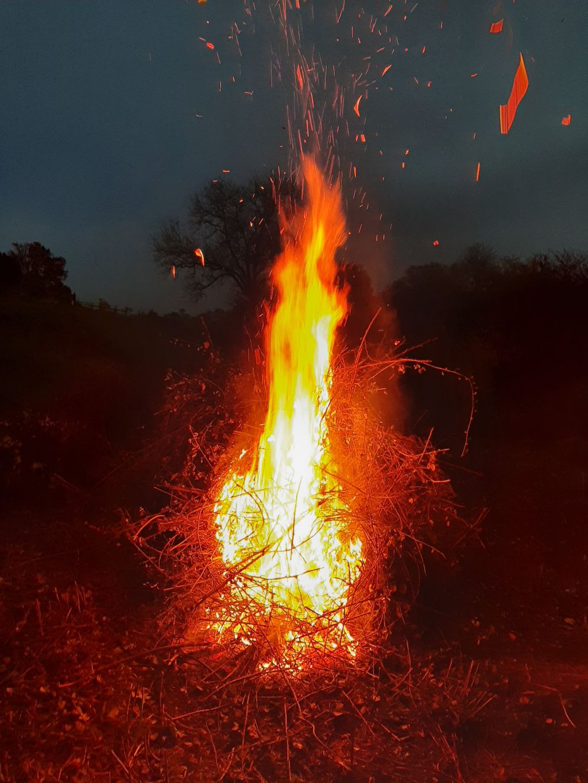 Het brandende bramenbosje